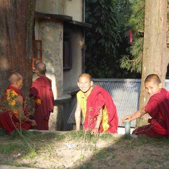 Young monks, Enchey Monastery, Gangtok, Sikkim