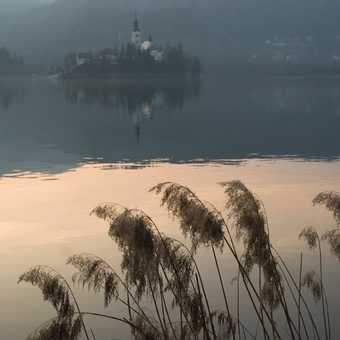 Evening Lake Bled