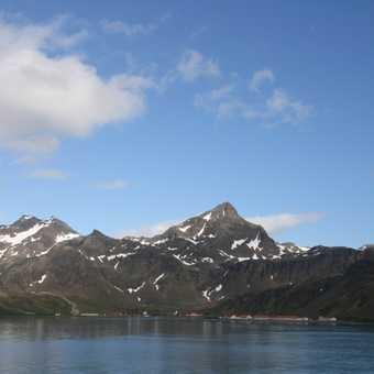 Grytviken on South Georgia