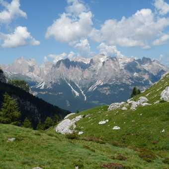 From Monzoni to Catinaccio