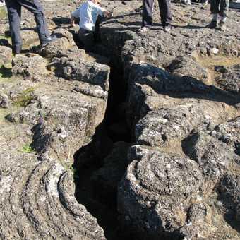Where tectonic plates meet