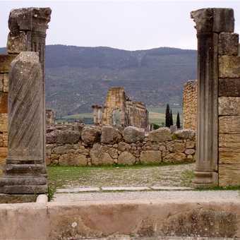 Basilica, Volubilis