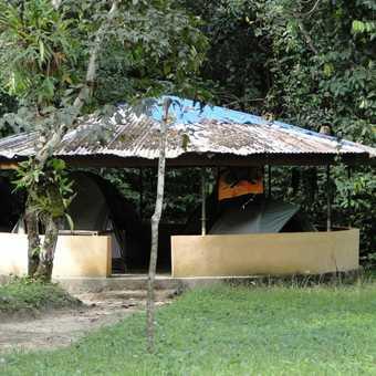 Camping on Tiwai Island