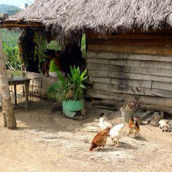 Home in the Sierra Maestra Mountains