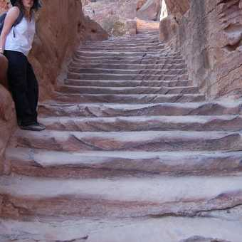 Oh no - not more steps!!