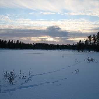 Oulanka Frozen Lake