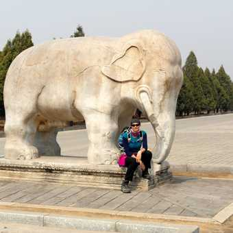 The Qing Tombs (and me)