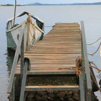 The ferry to Ngamba Island