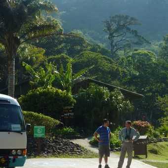 Hummingbirds at Cloud Forest Lodge, Monteverde