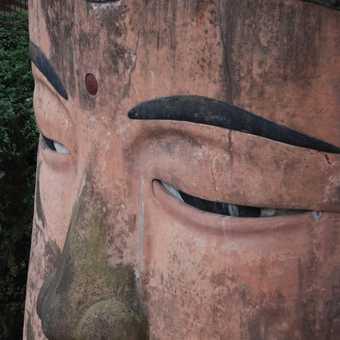Buddha marvelous