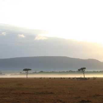 sunrise over masai mara