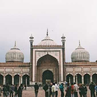 Jami Masjid - Delhi