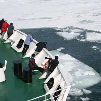 Vavilov reaches the ice