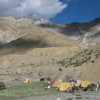 Wild campsite in the Parang Chu valley.