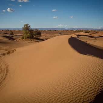 Camel ride_M'hamid_06