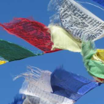 Prayer flags at the Markha Valley pass