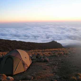 Looking over a see of cloud Kili early morning.