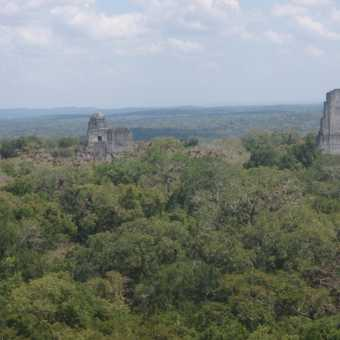Birds eyeview of Tikal