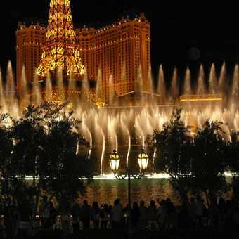 Bellagio fountains at night
