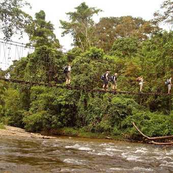 rope brige en route to camp 5