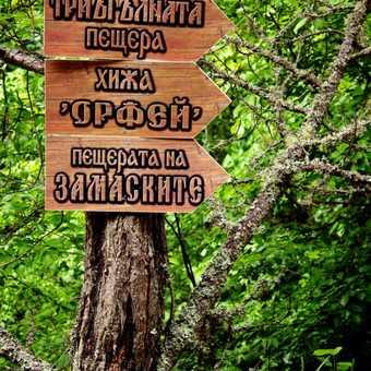 Cyrillic Signpost