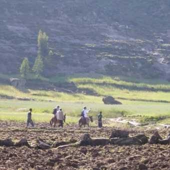 Spectacular scenery on the mule trek