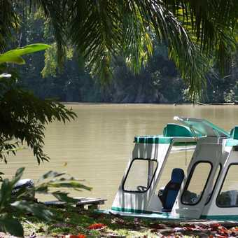 on the river to Tortugureo