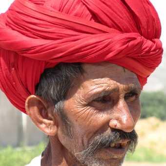 Camel Farmer