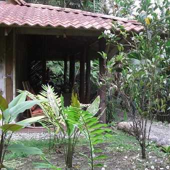 The rooms at Esqunas rainforest lodge, Golfito