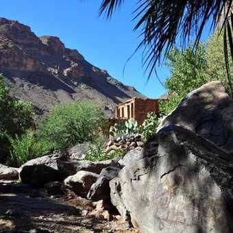 Rocks and Palms
