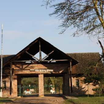 Into The Masai Mara