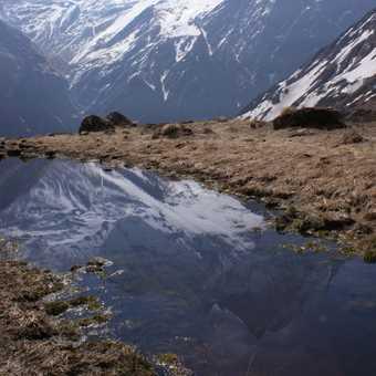 Reflections of Machhapuchhre