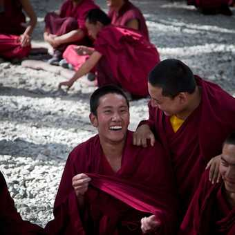 Senior Monk at Sera Monastery, Lhasa