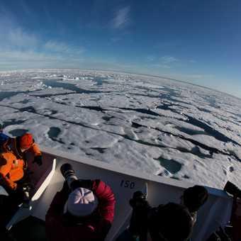 Polar Photo charter 2013