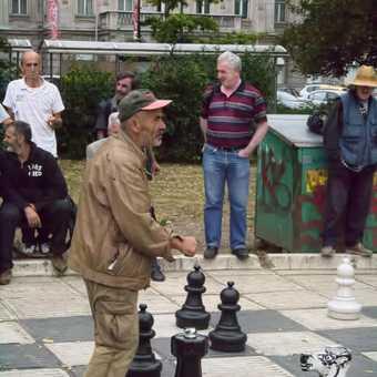 Sarajevo Chess