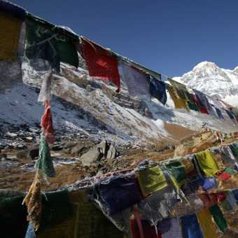 Frosty Prayer Flags in the Sanctuary