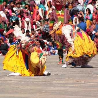 Masked Dancers at Thimpu