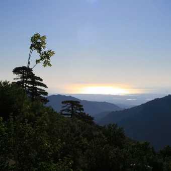 Distant Elba on the horizon (from Bergeries de Capanelle)