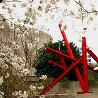 Smithsonian Sculpture Park