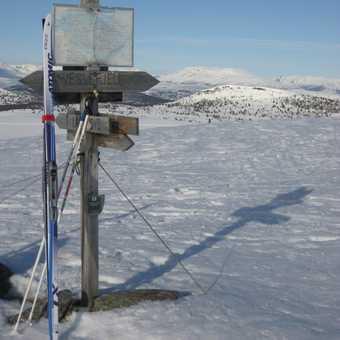 plateau summit