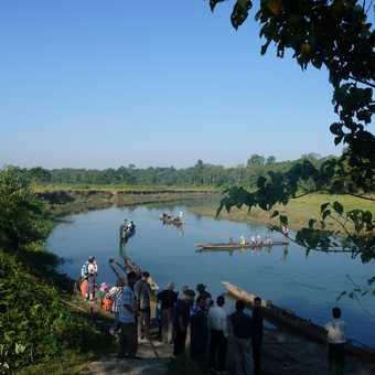 Big crocodile on bank of river of canoe ride
