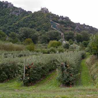Durnstein Castle