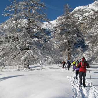 Day 2 Obernberg valley Off track skiing