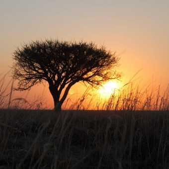 Salt Pan sunset