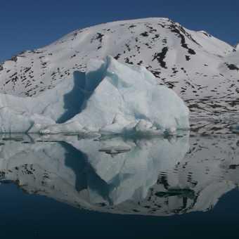 Ice reflection
