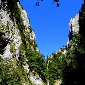 Zarnesti Gorge
