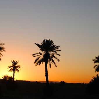 Saharan Sunrise 1