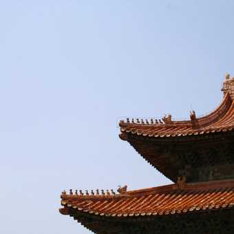 Chinese Rooftops