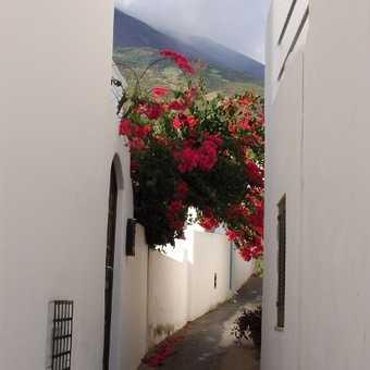 Sidestreet in Stromboli