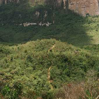 The wall of Roraima
